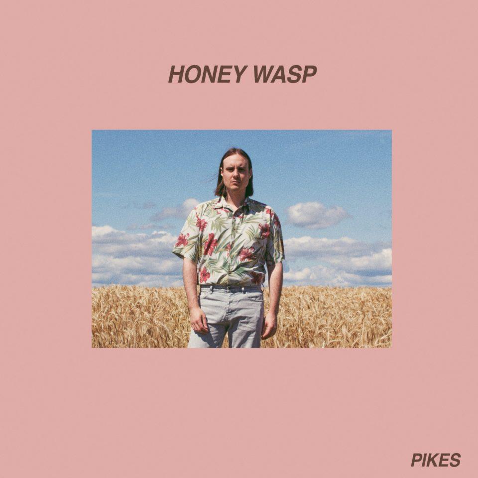 Pikes Honey Wasp